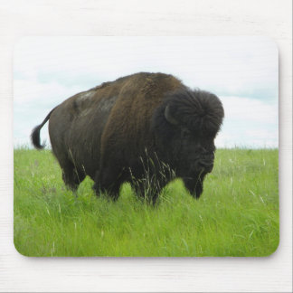 Buffalo Bull Mouse Pad