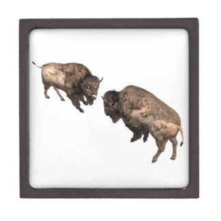 Buffalo Challenge Jewelry Box