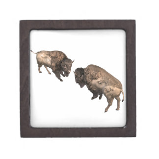 Buffalo Challenge Keepsake Box