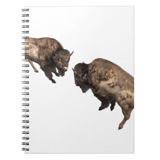 Buffalo Challenge Notebook