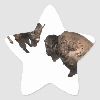 Buffalo Challenge Star Sticker