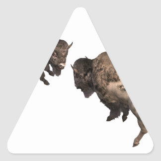 Buffalo Challenge Triangle Sticker