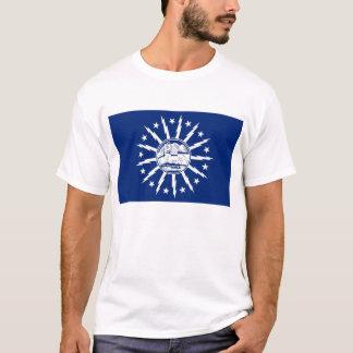 buffalo city flag united state america new york T-Shirt