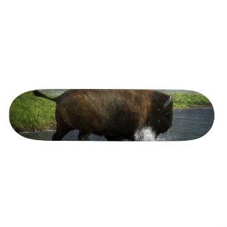 Buffalo Crossing a River Skate Decks