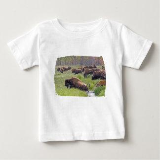 Buffalo Crossing Infant Shirt