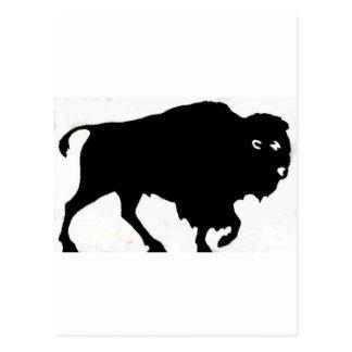 Buffalo Designs Postcard