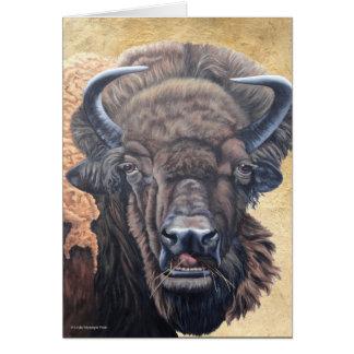 Buffalo Eating Greeting Card