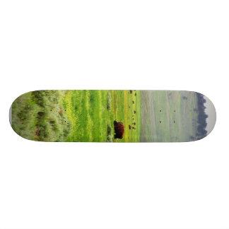 Buffalo Field Skateboard Deck
