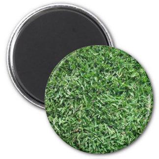 Buffalo grass 2 inch round magnet