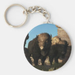 Buffalo Guard Basic Round Button Keychain