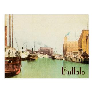 Buffalo Harbor Vintage Postcard