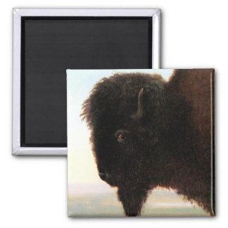 Buffalo Head art Albert Bierstadt bison painting 2 Inch Square Magnet