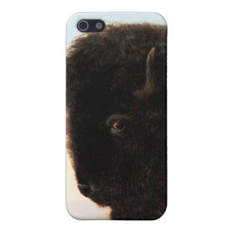 Buffalo Head art Albert Bierstadt bison painting iPhone SE/5/5s Cover