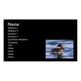 Buffalo Head Duck Double-Sided Standard Business Cards (Pack Of 100)