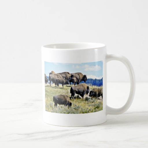 Buffalo Herd - Yellowstone National Park Classic White Coffee Mug