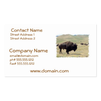 Buffalo Hunts Business Cards