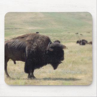 Buffalo Hunts Mouse Pad