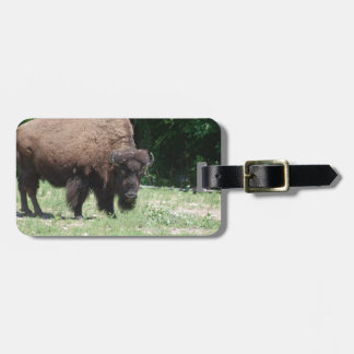 Buffalo in Field Tag For Bags