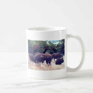 Buffalo in Golden Gate Park Vintage Postcard Coffee Mug