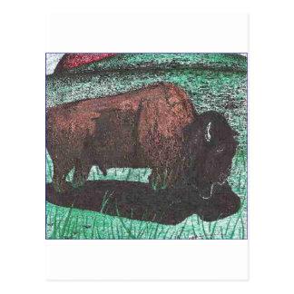 Buffalo ink drawing postcard