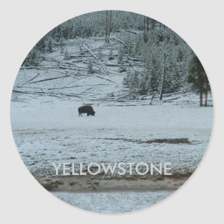 Buffalo Loner Sticker