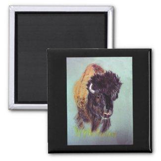 Buffalo Magnet magnet
