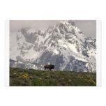 Buffalo Mountain Art Photo
