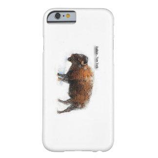 Buffalo New York iPhone 6 Case