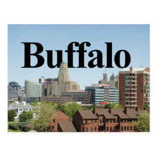 Buffalo New York Skyline with Buffalo in the Sky Postcard