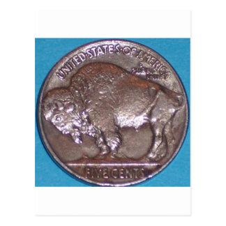 Buffalo Nickel Postcard