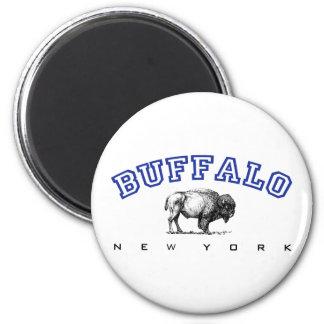 Buffalo NY Magnet