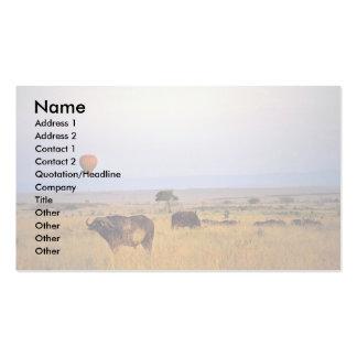 Buffalo on the plain business card