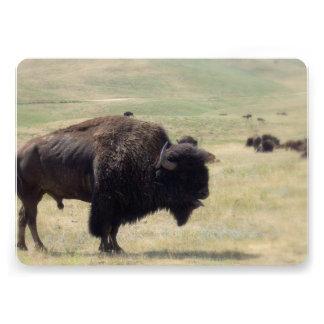 Buffalo on the Plains Custom Invitation