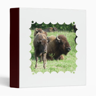Buffalo Picture Binder