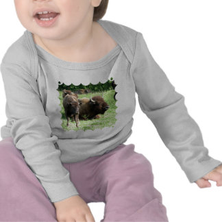 Buffalo Picture Infant Tees