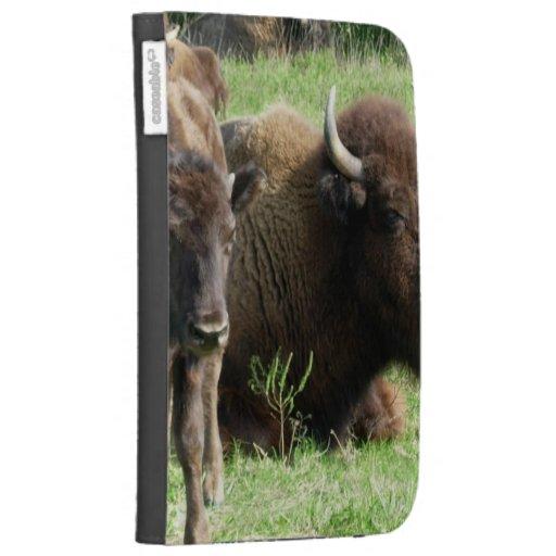 Buffalo Picture Kindle Case