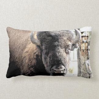 Buffalo Pillows