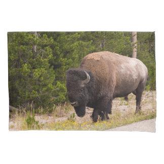 Buffalo Pillow Case
