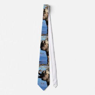 Buffalo safari ties
