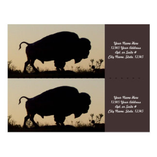 Buffalo Silhouette Bookmarkers Postcard