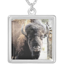 Buffalo Silver Plated Necklace