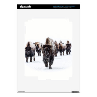 Buffalo Skin For iPad 3