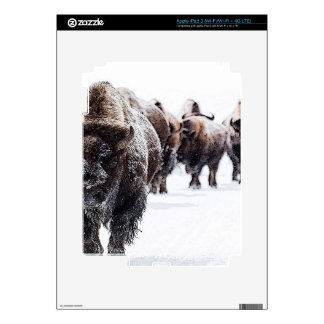 Buffalo Skins For iPad 3