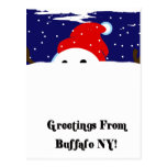 Buffalo Snowman Postcard