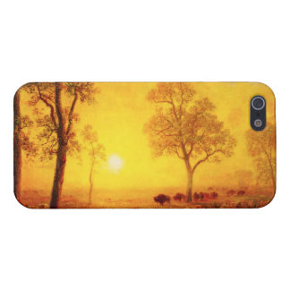 Buffalo Sunset on the Mountain iPhone 5 Case