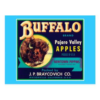 Buffalo Vintage Apples Label Postcard