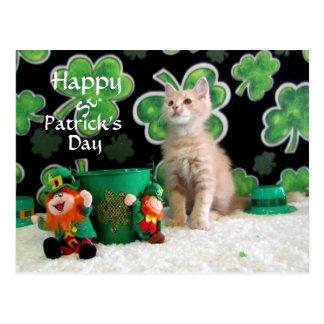Buffington's St. Patrick's Day Postcard (5549)