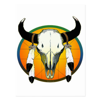 bufflalo skull postcard