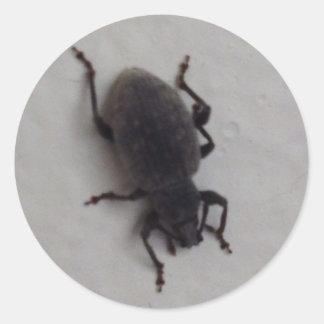 Bug #5149 classic round sticker