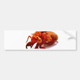 bug bumper sticker